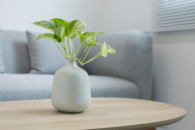 木製のテーブルに白い花瓶の植物