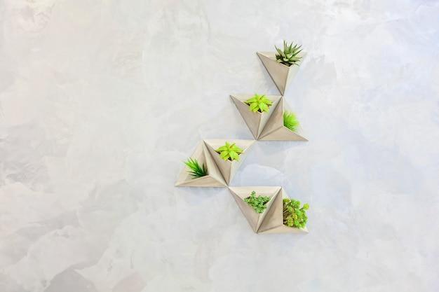 밝은 벽에 삼각형 화분에 식물. 사무실 및 가정 장식, 흥미로운 디자인 솔루션