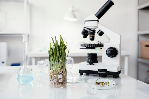 Plants and microscope arrangement