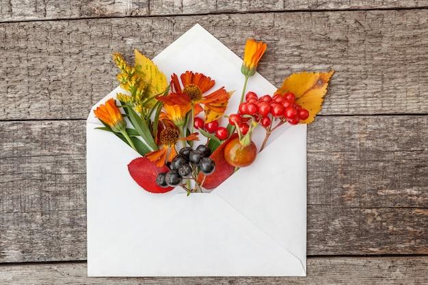 ガマズミナナカマド、ベリー、犬バラ、メール封筒の色とりどりの葉の植物