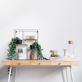 Plants on table