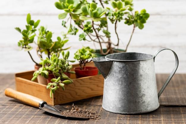 Горшок для растений с лейкой