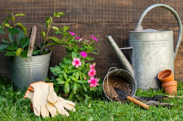 물을 수있는 식물 냄비