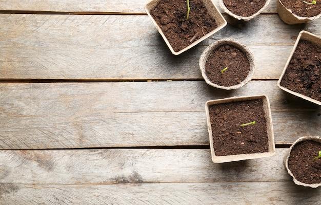 Саженцы растений в торфяных горшках на деревянной поверхности