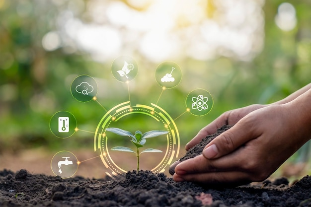 토양에서 자라는 식물과 아이콘을 포함한 식물의 손 관리. 식물 성장에 영향을 미치는 요인은 토양, 물, 영양분 또는 비료, 공기, 햇빛 및 온도입니다.