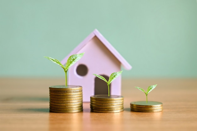 Plants that grow on piles of coins real estate investment ideas