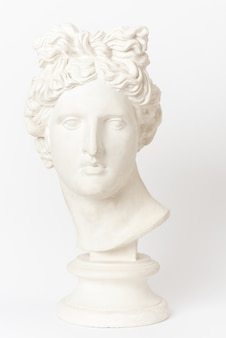 Plaster head of apollo belvedere