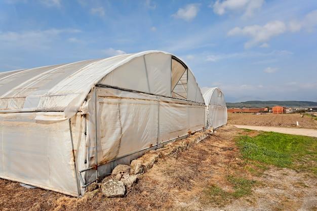 Пластиковые теплицы для сельского хозяйства в летнем фермерском саду в эстремадуре