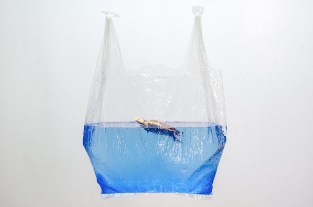 Plastic bag holding blurred turtle toy model in water surface on white background