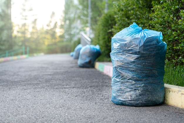 Plastic bags with garbage, leaves and old grass are neatly lined up along the sidewalk after street cleaning