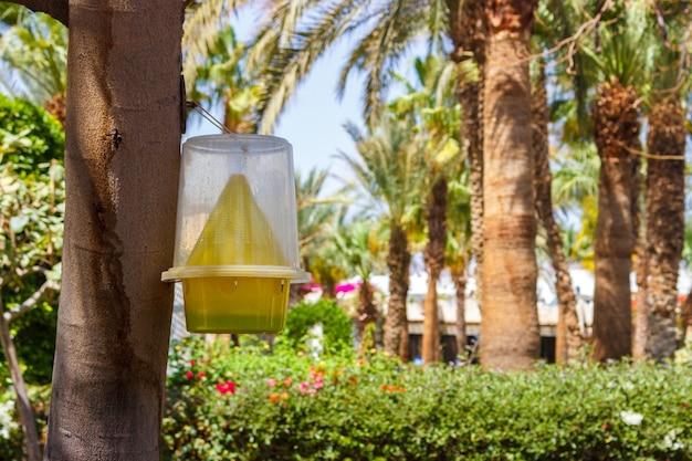 Пластиковая кормушка для птиц, наполненная различными семенами и зерном на дереве.