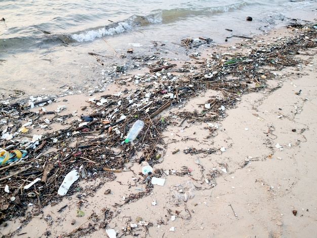 Plastic bottle bamboo and waste pollution on beach