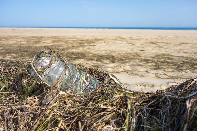 Пластиковая бутылка между водорослями на песке пляжа. пластиковое загрязнение концепции океанов.