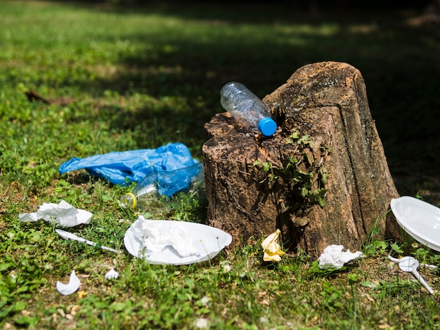 Plastic garbage near tree stump at garden