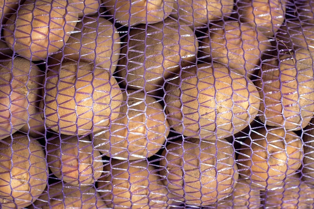 A plastic grid of raw white potatoes