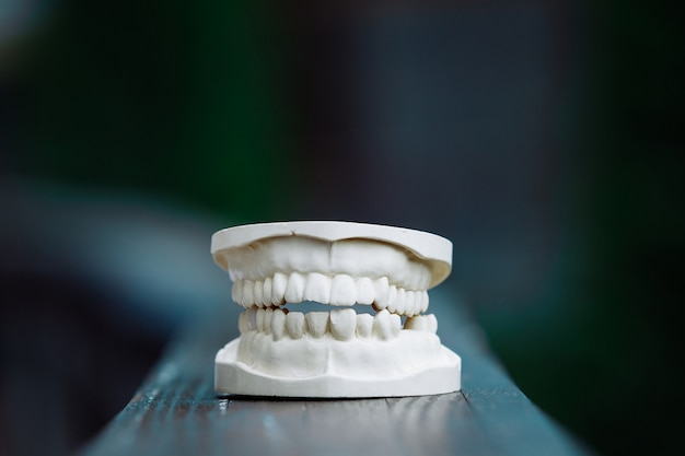 A plastic model of the jaw for prosthetics on the table