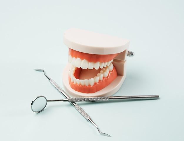 Пластиковая модель человеческой челюсти с белыми зубами и различными стоматологическими инструментами для работы врача в полости рта, синий фон, крупным планом