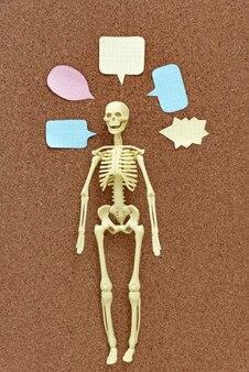 Пластическая модель человеческого скелета