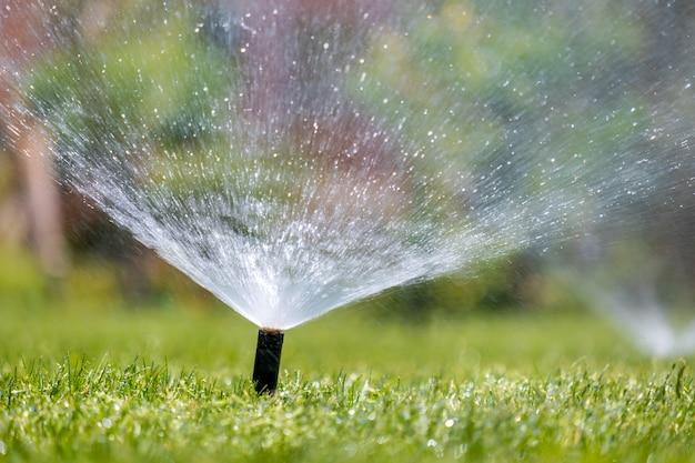 여름 정원에서 물로 잔디 잔디를 관개하는 플라스틱 스프링클러