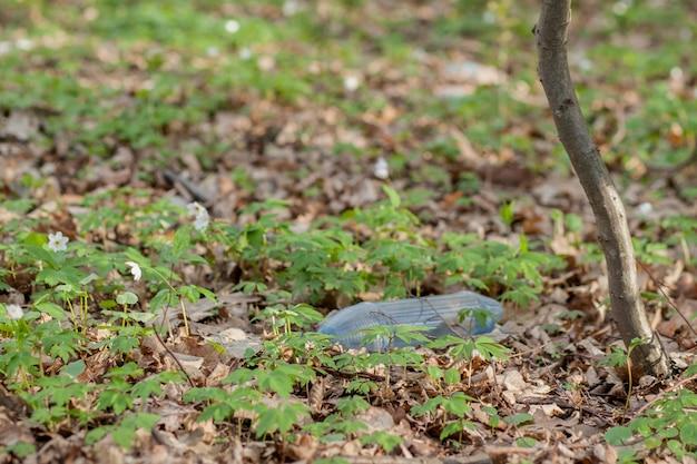 森の中のプラスチックのゴミ。隠れた自然。草の上に横たわるプラスチック容器