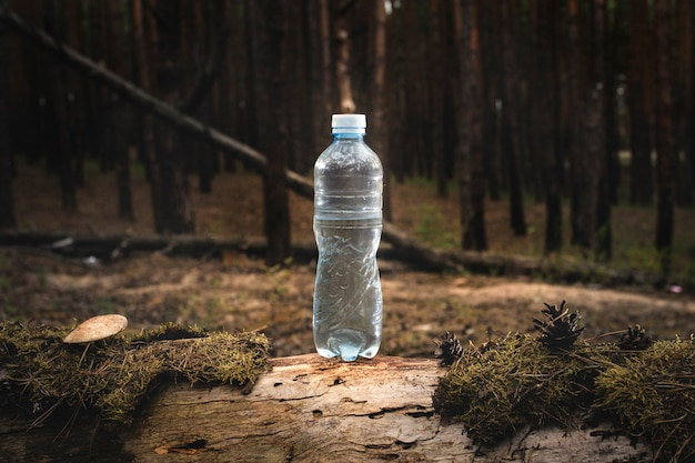 Plastic water bottle stands on a felled log with moss and mushrooms on forest. concept of natural clean water.