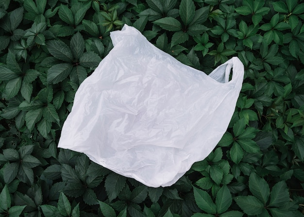 Plastic white bag outside