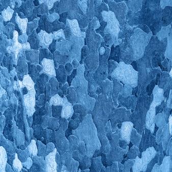 Platan bark wooden background toned classic blue color. close up. natural tree bark texture.
