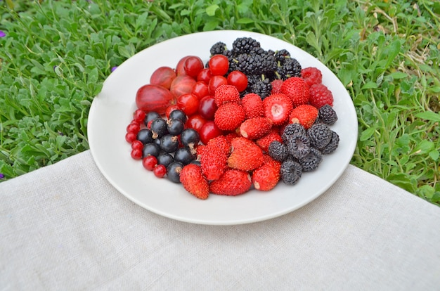 Plate of assortment berries