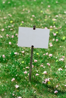 Plate on a background of green lawn. place for text. Premium Photo