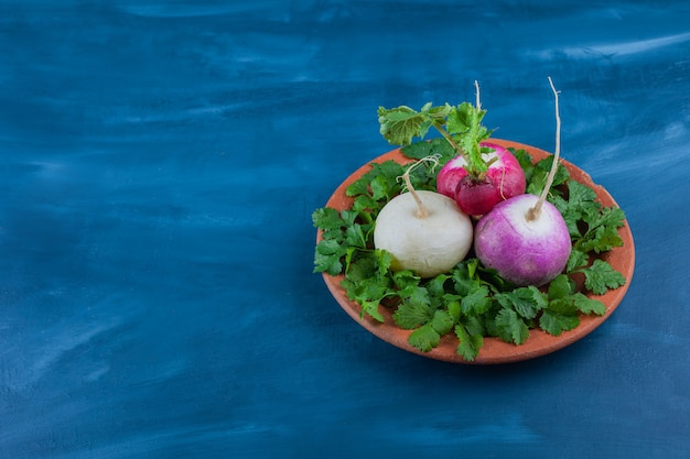 Plate of healthy white and red radishes with greens on blue table.
