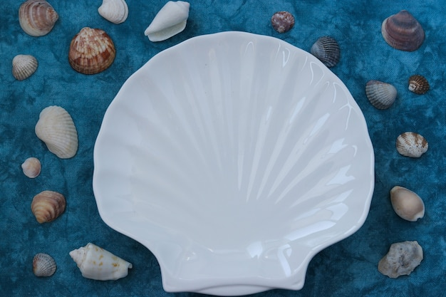 Plate white shell in marine style on a blue surface, top view