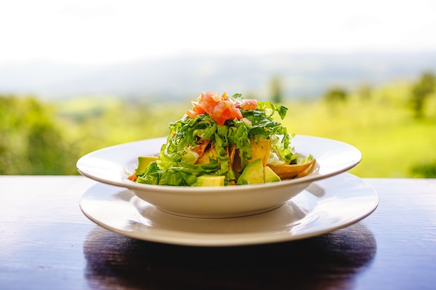 Plate with salad on a wooden table with the jungle landscape. costa rica gastronomy