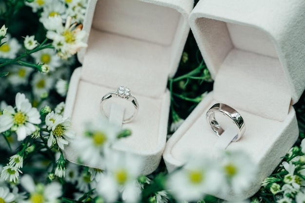 Platinum couple wedding rings in open boxes place on white flowers.