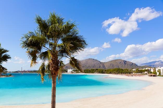 Platja de alcudia beach in mallorca majorca