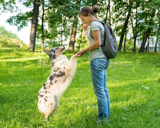 Игривая дрессированная собака смешанной породы дает лапу счастливой женщине средних лет во время прогулки в парке