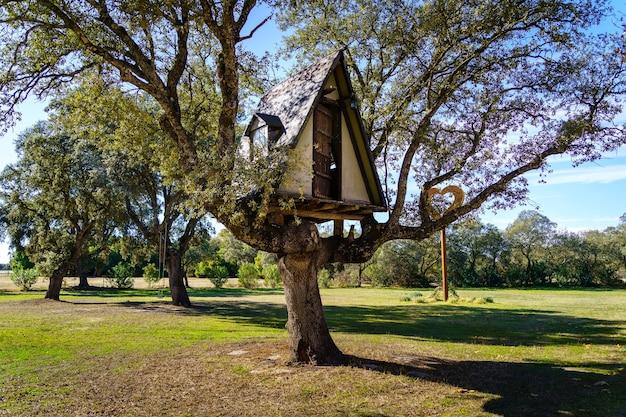 大きな木の上にある子供用のプレイルーム。スペイン。