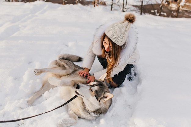 Pleased husky resting on snow enjoying winter during outdoor fun. portrait of stylish young woman in white outfit stroking dog in cold february day.