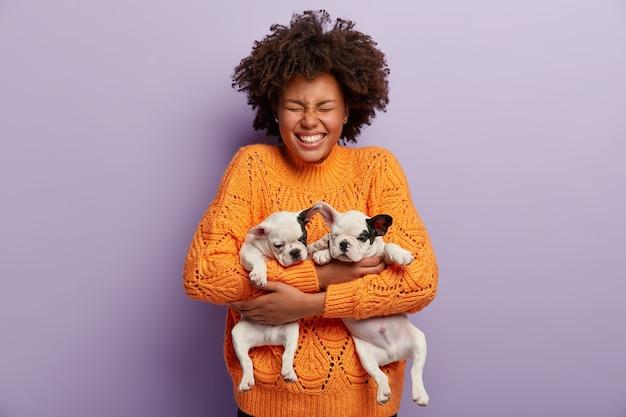 아프로 헤어컷으로 기뻐하는 어두운 피부의 여성, 두 마리의 작은 개를 안고, 눈을 감고, 주황색 스웨터를 입고, 보라색 벽 위에 포즈를 취합니다. 긍정적 인 소녀는 집에서 좋아하는 애완 동물과 함께 재생