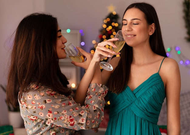 Soddisfatte ragazze graziose bevono bicchieri di champagne incrociando le mani godendosi il periodo natalizio a casa
