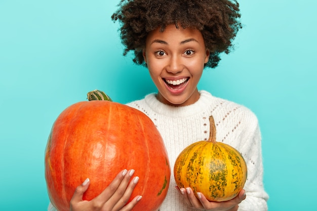 Pleased smiling curly woman chooses pumpkin for halloween, holds big and small squash, wears white sweater
