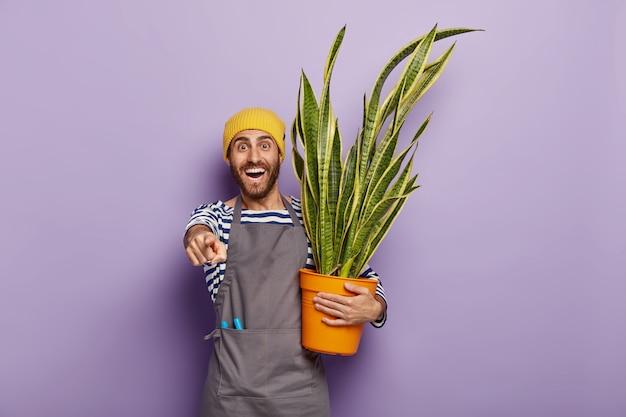 Il ragazzo con la barba lunga soddisfatto indica davanti, ha un ampio sorriso, mostra denti bianchi, porta una pianta in vaso, indossa cappello e grembiule gialli