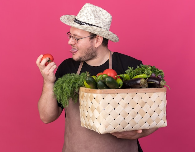 Pleased young male gardener wearing gardening hat holding vegetable basket and looking at tomato in his hand isolated on pink wall