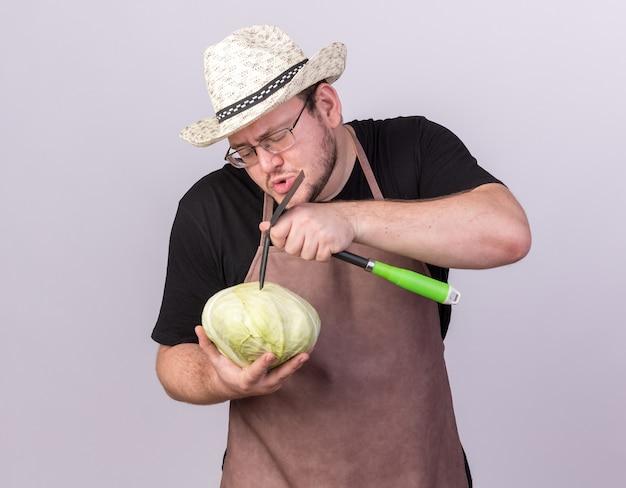 白い壁に分離されたくわ熊手でキャベツを引っ掻く園芸帽子を身に着けている若い男性の庭師を喜ばせる