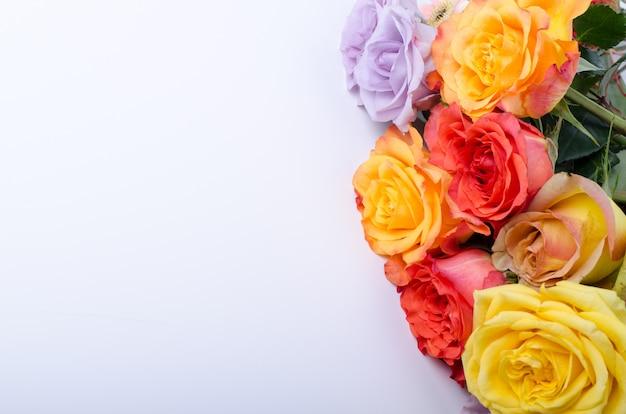 Plenty of multi colored roses background