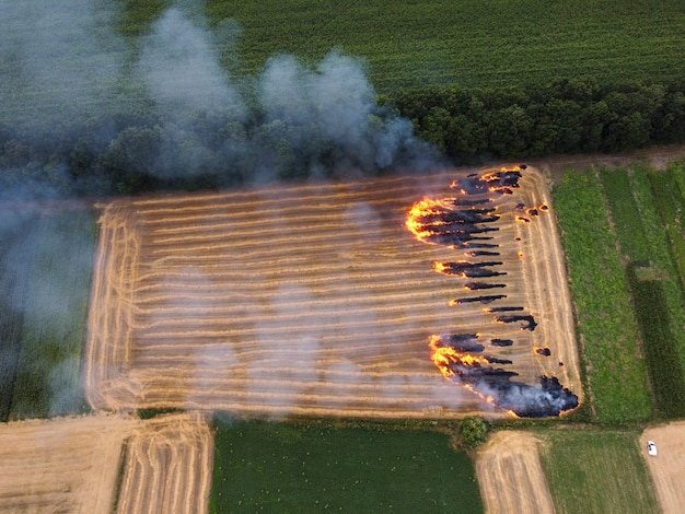 짚이있는 토지, 들판의 불, 짚 잔류 물 연소, 환경 대기 오염
