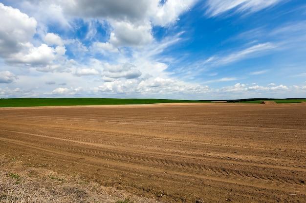 耕作農地-播種用の耕作農地。春。ベラルーシ