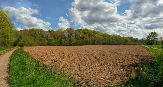 Plowed field and blue sky with clouds