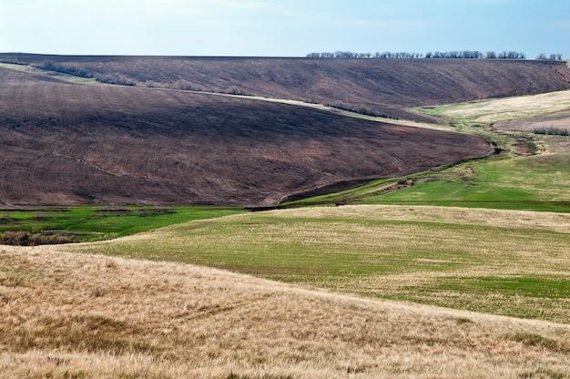耕されたフィールド。丘陵草原。春