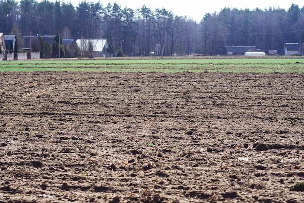 春の村の耕作地、家