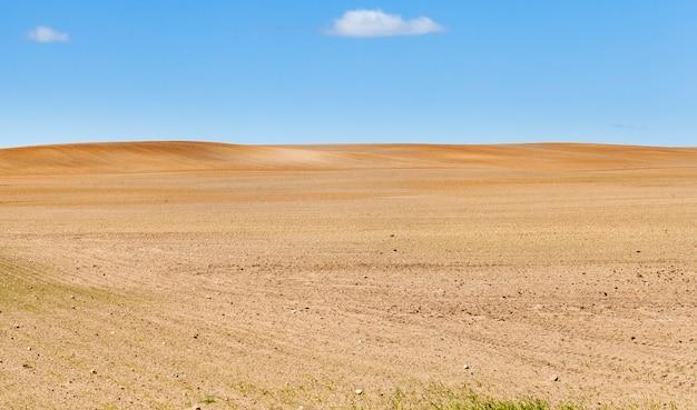 地平線まで耕された畑、青空の農業地帯の春の風景